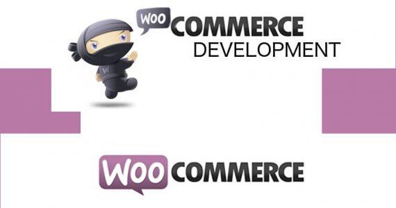 CyberN3rd woocommerce development